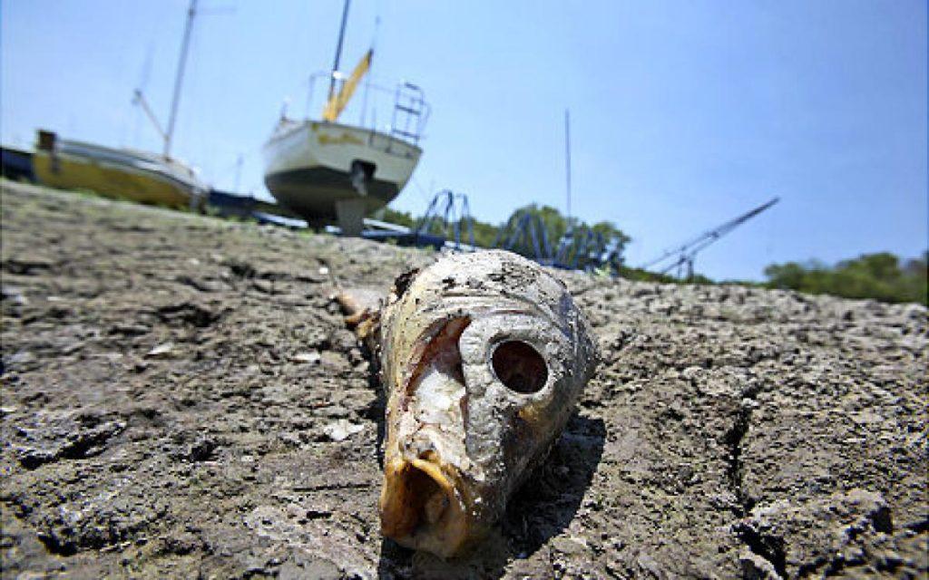 alg-drought-texas-2-jpg