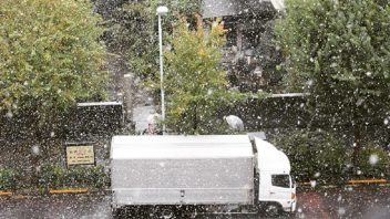 TWC: Snow Falls in Tokyo for the First Time in November Since 1962