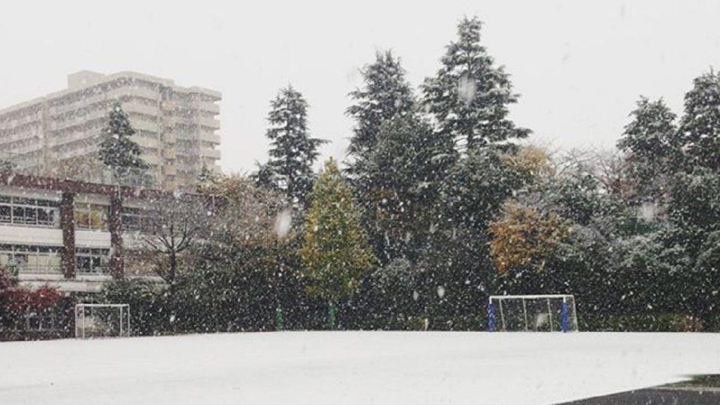 Snow falling in Nerima, Tokyo, Japan.  (Instagram/arreolap)