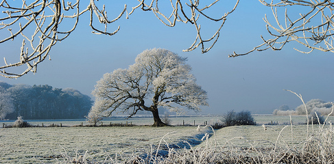 CHORLEYWEATHER.COM: Cold Weather On The Way?