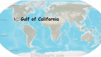 Much of the Gulf of California surface area has warmed to 32C (90F)