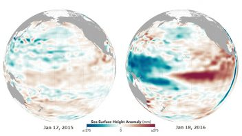 World's oceans cool but atmosphere and land temperature peaks in wake of the Super El Nino