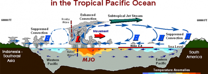 Did tropics dictate N Hemisphere winter 18-19? What gave may have also taken away!