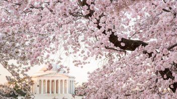 Abrupt flip from lingering winter to spring for Eastern US but…