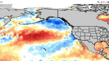 Linkage Between Solar Minimum & Cool Pacific, Warming Atlantic… Best Chance of Real Winter Since 2010?